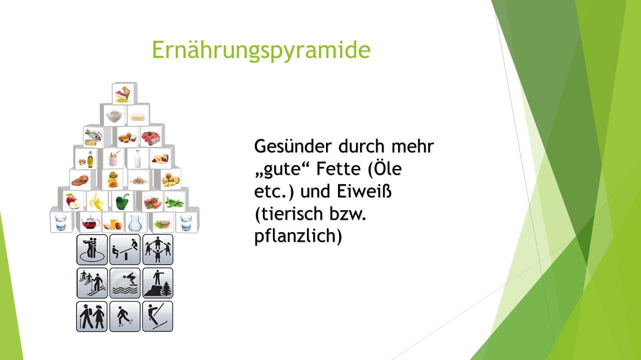 """Ernährungspyramide Gesünder durch mehr """"gute Fette (Öle etc.) und Eiweiß (tierisch bzw."""