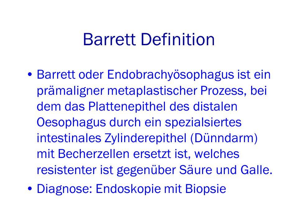 Barrett Definition