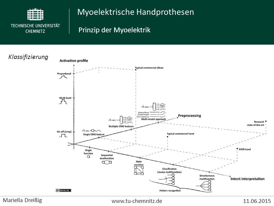 Prinzip der Myoelektrik