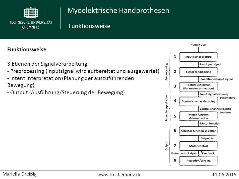 Funktionsweise Funktionsweise 3 Ebenen der Signalverarbeitung: