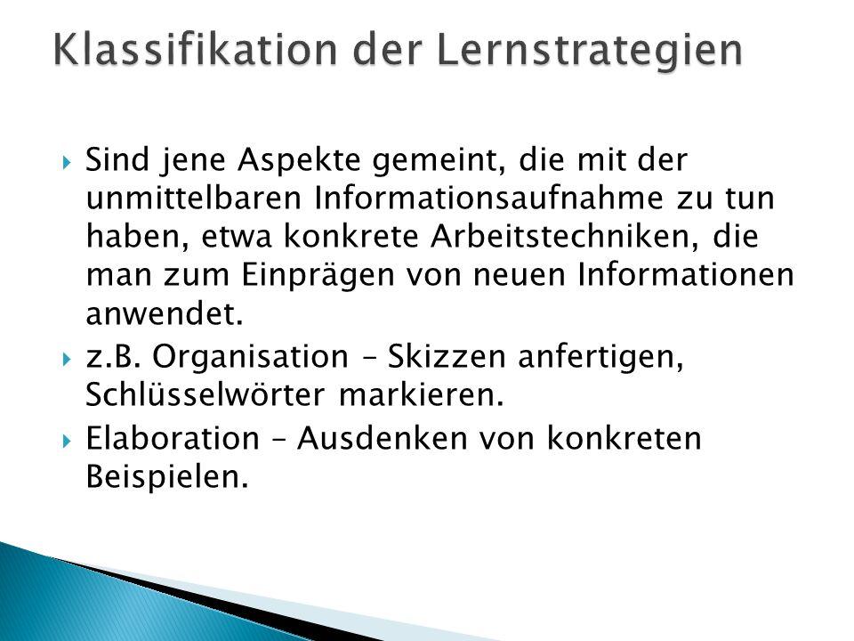 Klassifikation der Lernstrategien