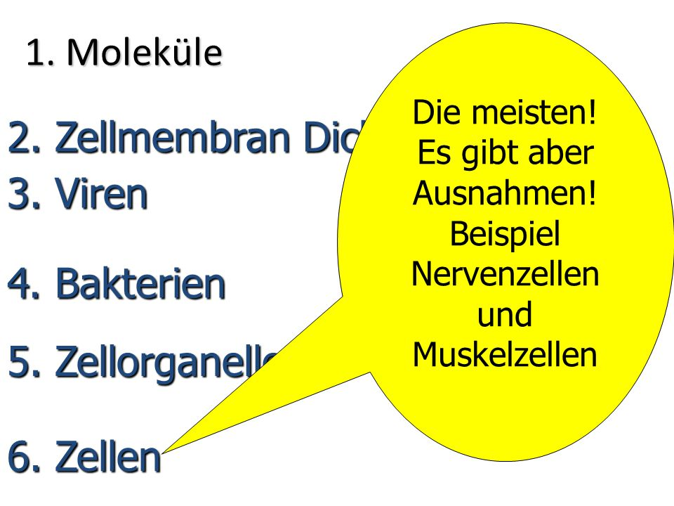 1. Moleküle 2. Zellmembran Dicke 3. Viren 4. Bakterien