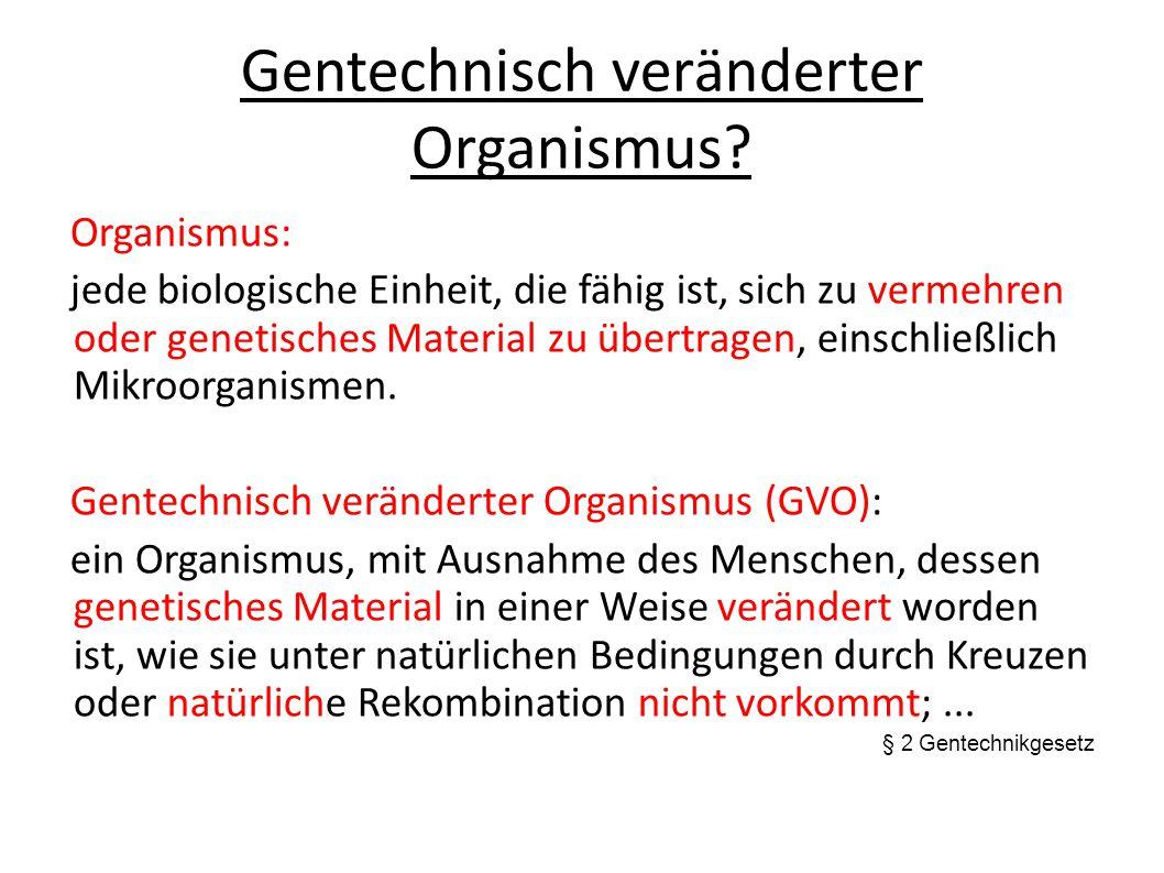 Gentechnisch veränderter Organismus