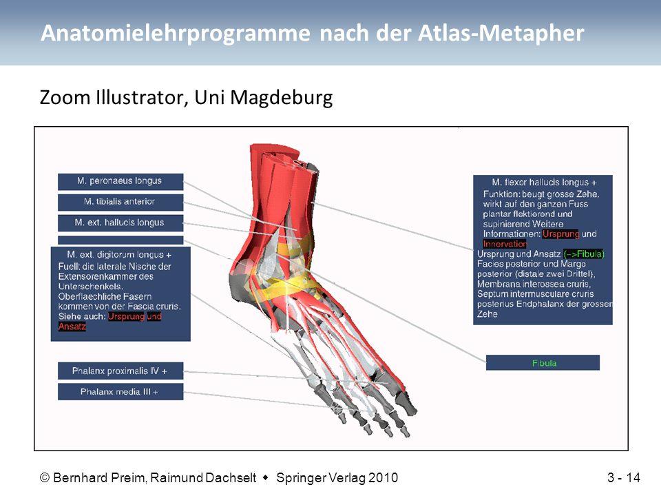 Anatomielehrprogramme nach der Atlas-Metapher