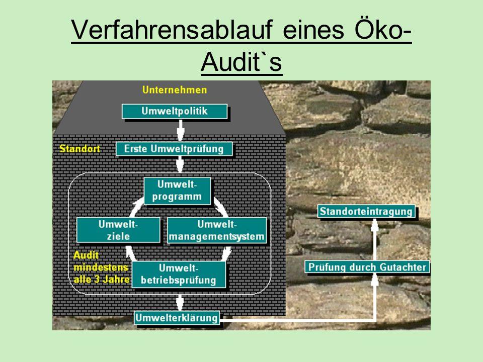 Verfahrensablauf eines Öko-Audit`s