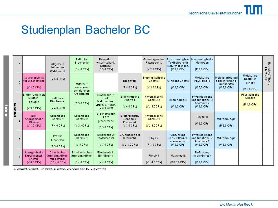 Studienplan Bachelor BC