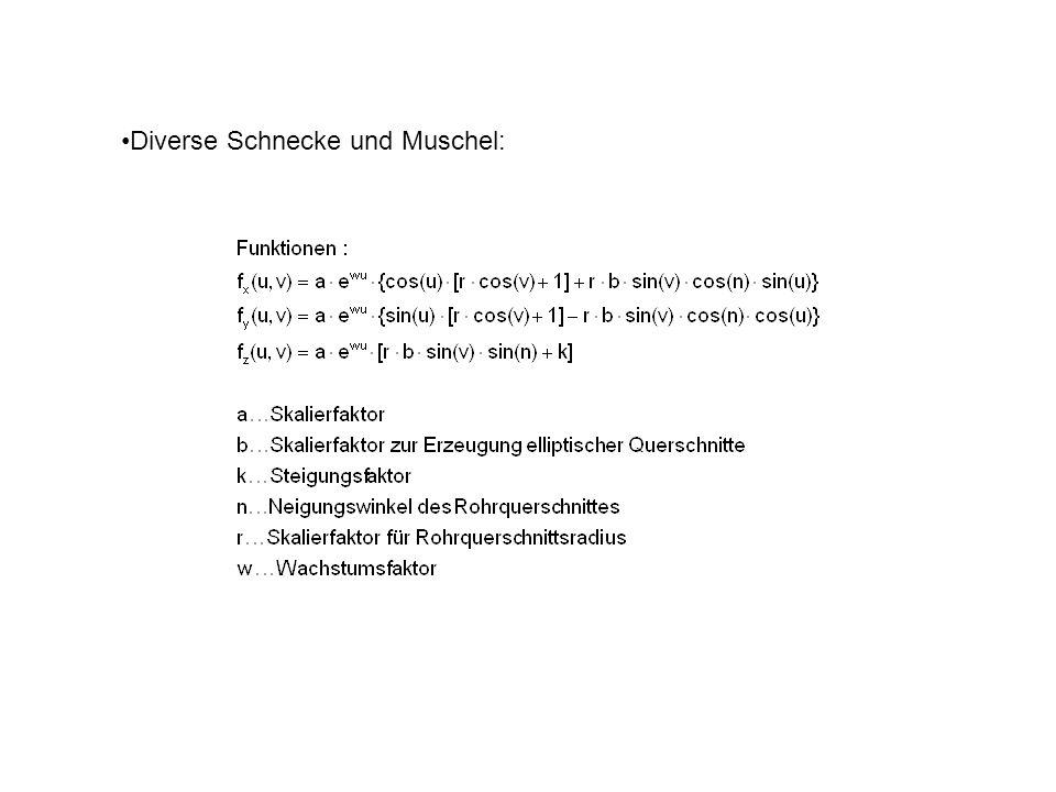 Diverse Schnecke und Muschel: