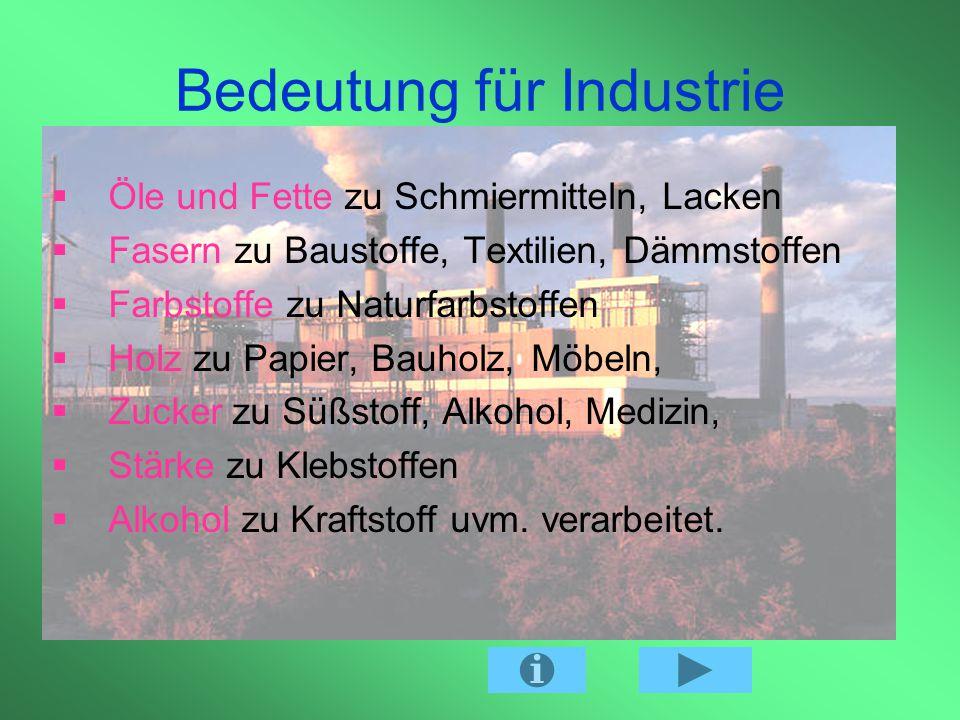 Bedeutung für Industrie