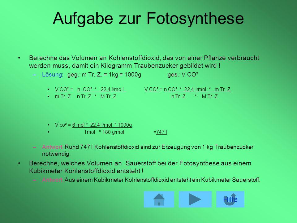 Aufgabe zur Fotosynthese
