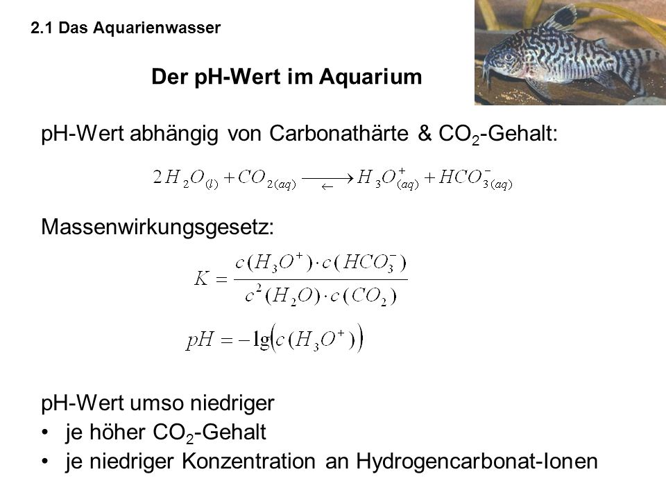 chemie der aquaristik ppt video online herunterladen. Black Bedroom Furniture Sets. Home Design Ideas