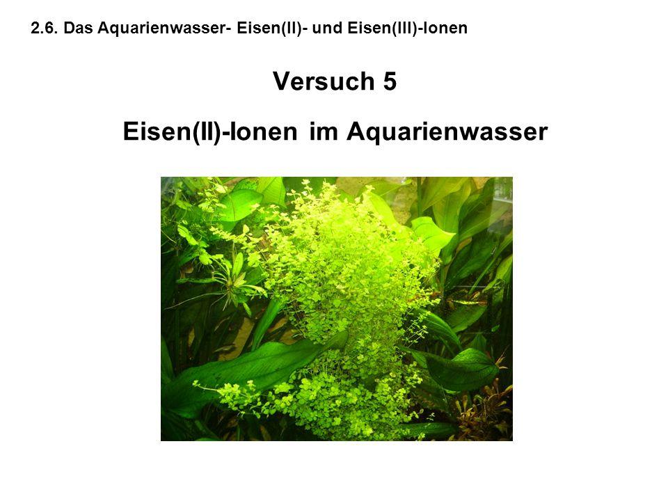 Versuch 5 Eisen(II)-Ionen im Aquarienwasser
