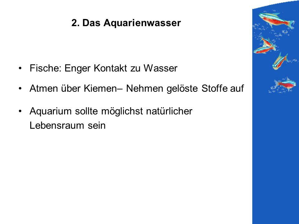 2. Das Aquarienwasser Fische: Enger Kontakt zu Wasser. Atmen über Kiemen– Nehmen gelöste Stoffe auf.