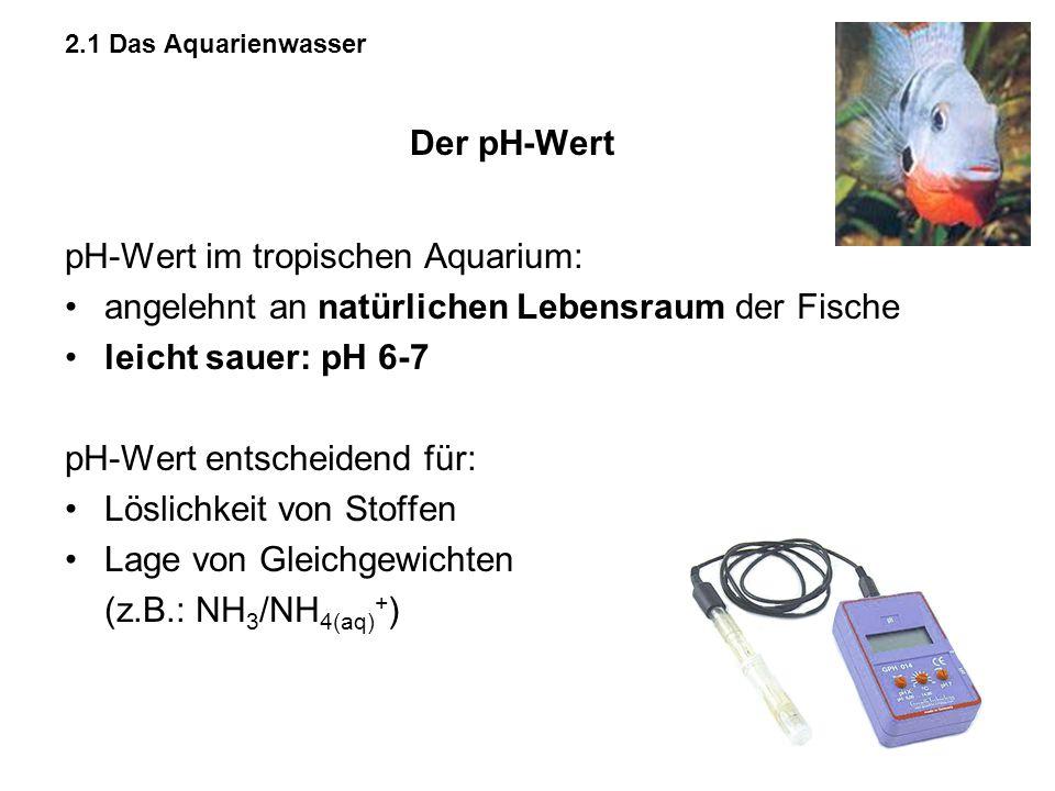 pH-Wert im tropischen Aquarium: