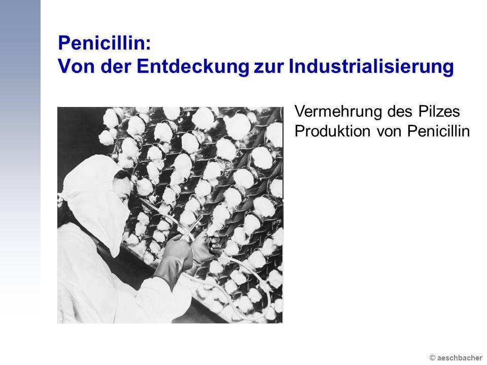 Penicillin: Von der Entdeckung zur Industrialisierung