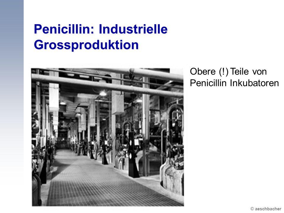 Penicillin: Industrielle Grossproduktion