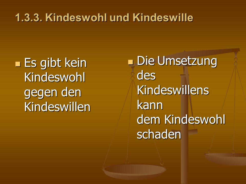 1.3.3. Kindeswohl und Kindeswille