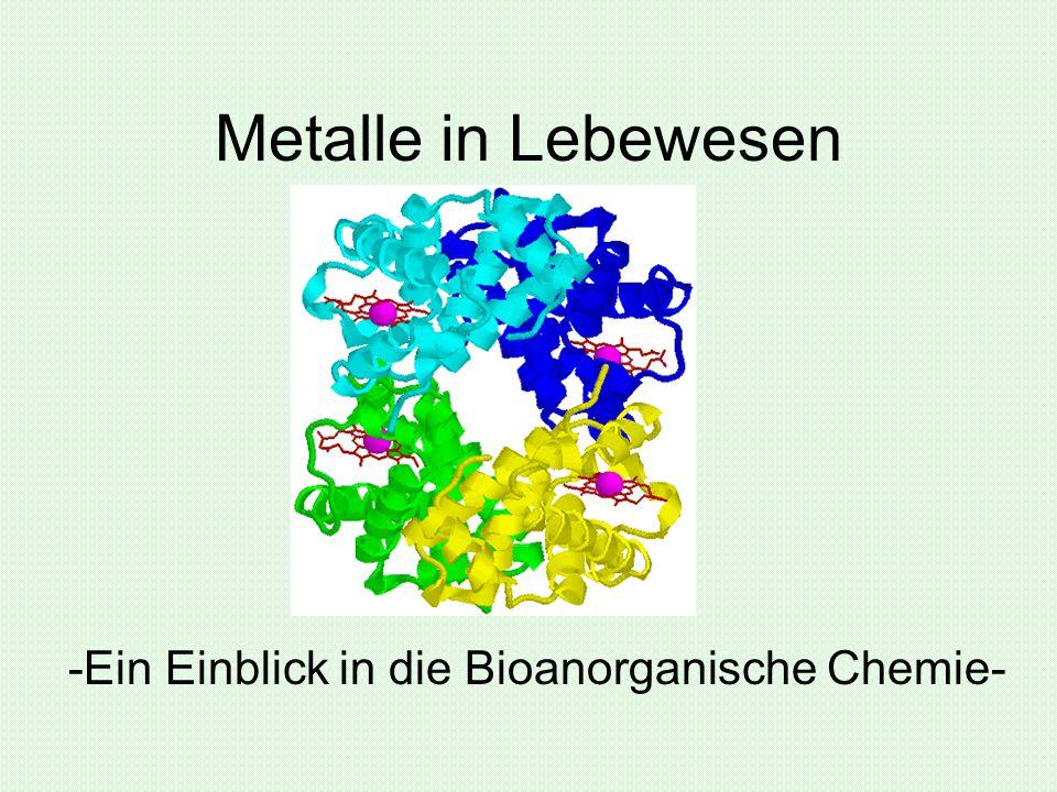 -Ein Einblick in die Bioanorganische Chemie-