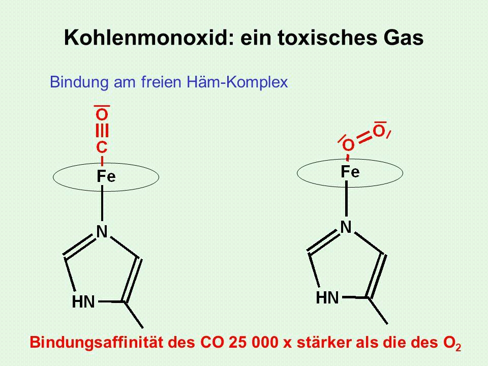 Kohlenmonoxid: ein toxisches Gas