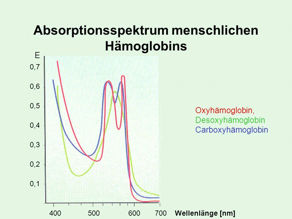 Absorptionsspektrum menschlichen Hämoglobins