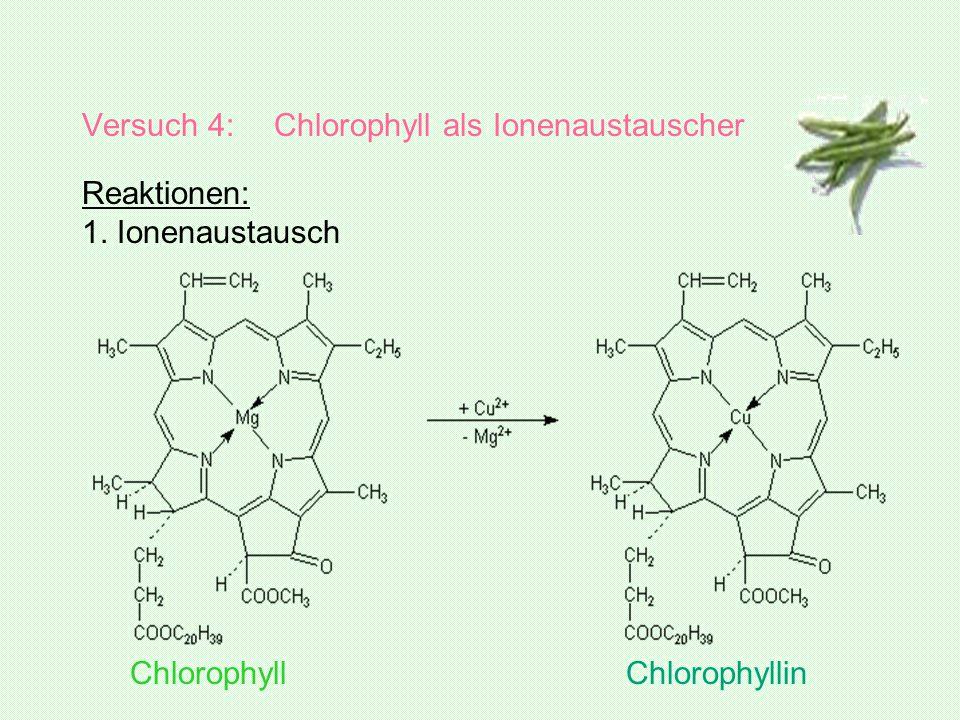 Versuch 4: Chlorophyll als Ionenaustauscher