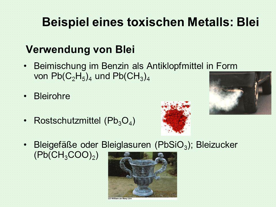 Beispiel eines toxischen Metalls: Blei