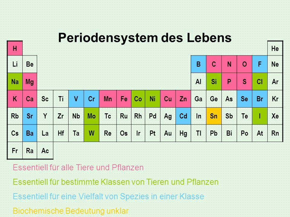 Periodensystem des Lebens