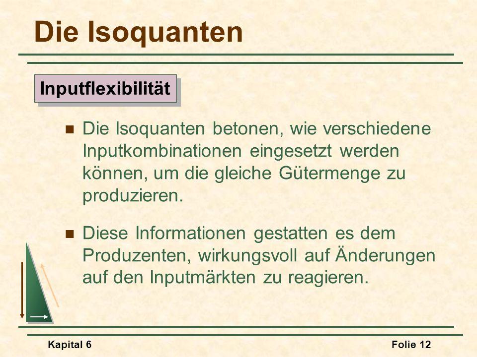 Die Isoquanten Inputflexibilität