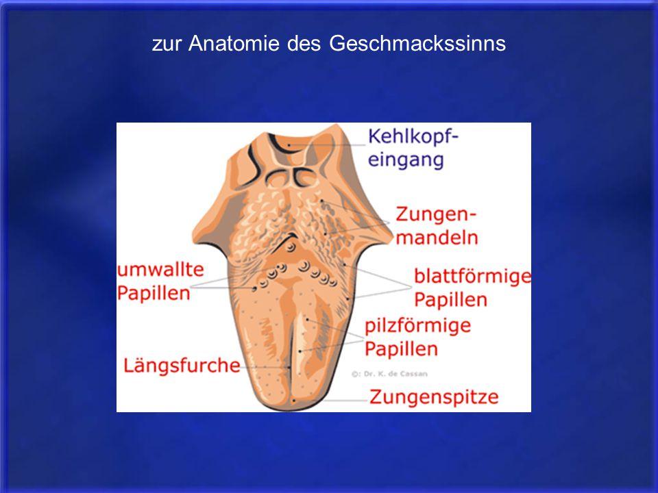 Fein Anatomie Und Physiologie Labor Ideen - Menschliche Anatomie ...