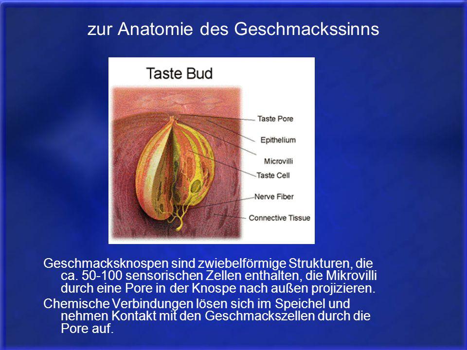 Atemberaubend Akkreditierte Anatomie Und Physiologie Klassen Online ...
