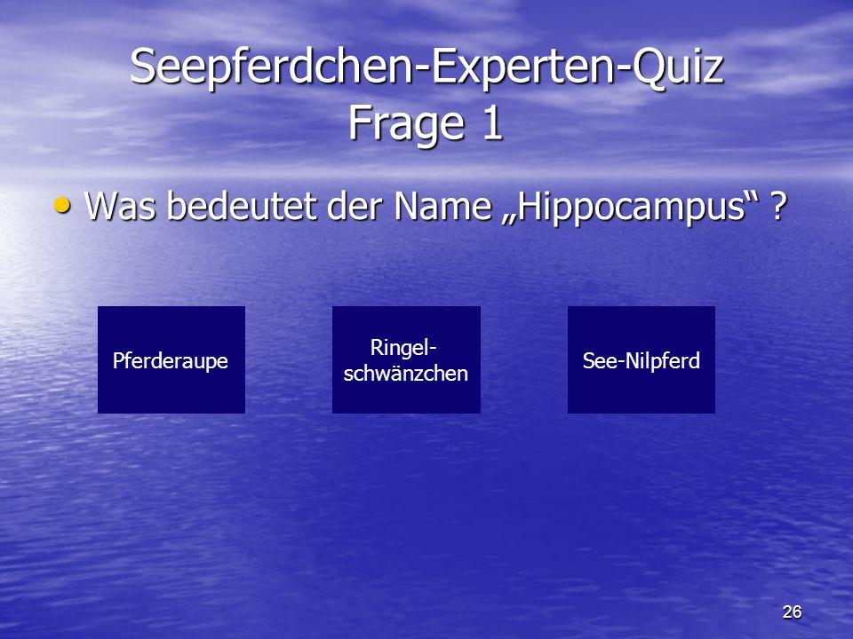 Seepferdchen-Experten-Quiz Frage 1