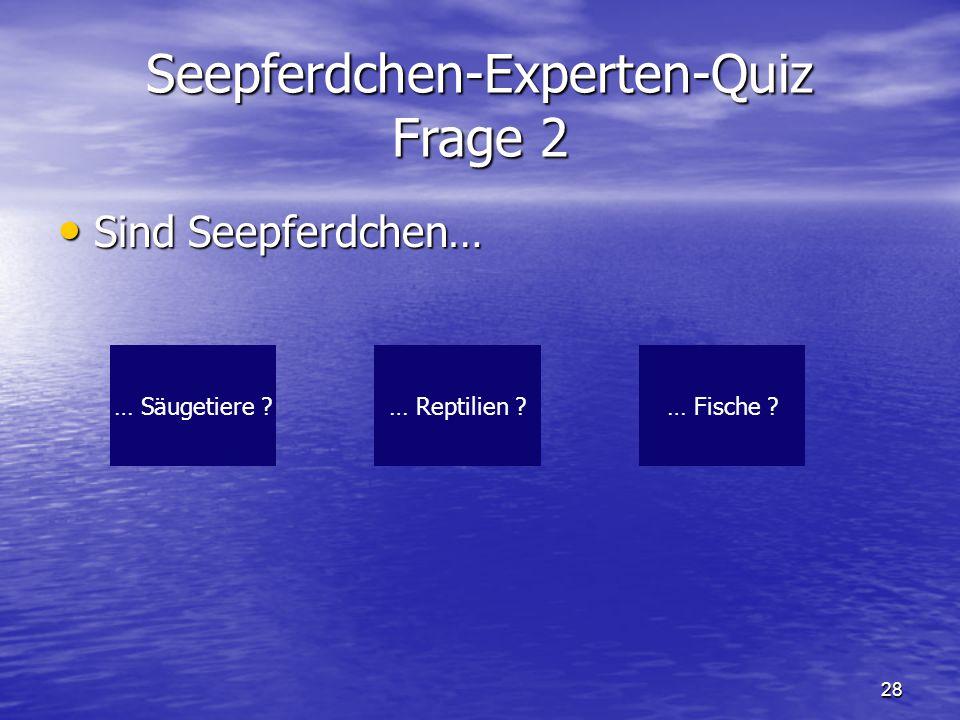 Seepferdchen-Experten-Quiz Frage 2