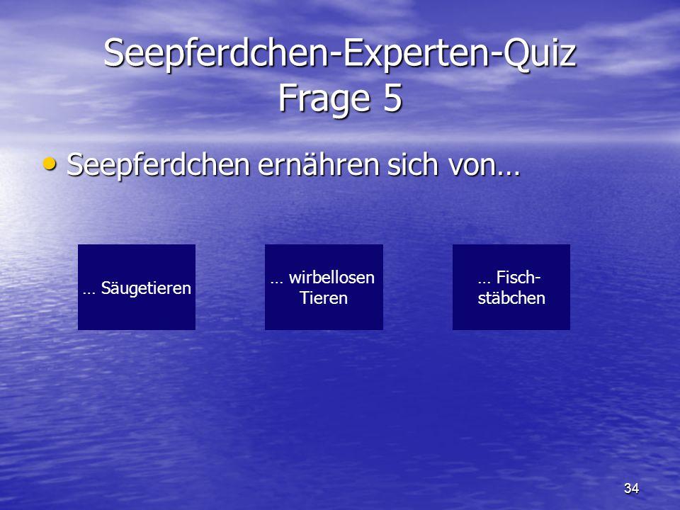 Seepferdchen-Experten-Quiz Frage 5