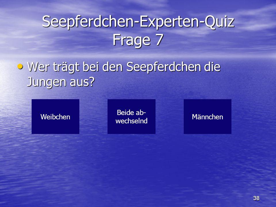 Seepferdchen-Experten-Quiz Frage 7