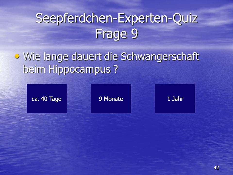 Seepferdchen-Experten-Quiz Frage 9