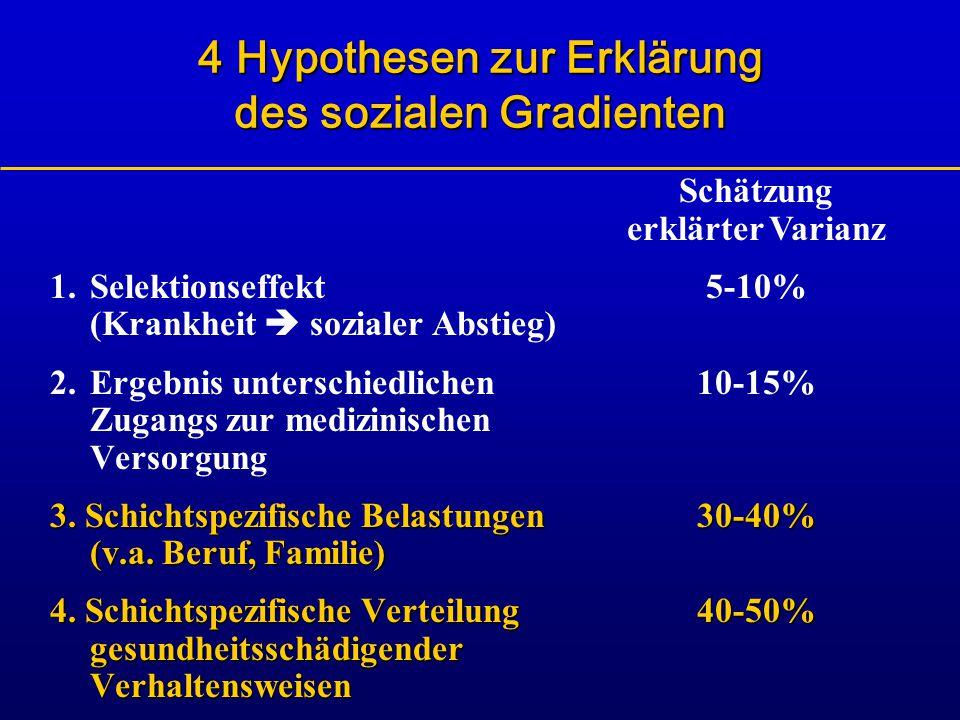 4 Hypothesen zur Erklärung des sozialen Gradienten