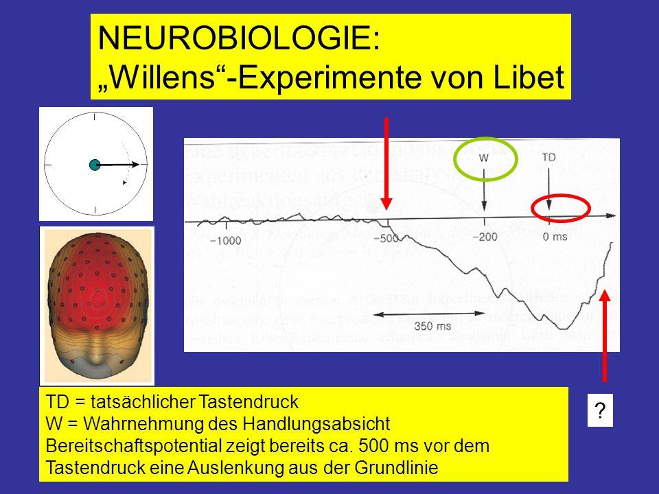 """""""Willens -Experimente von Libet"""