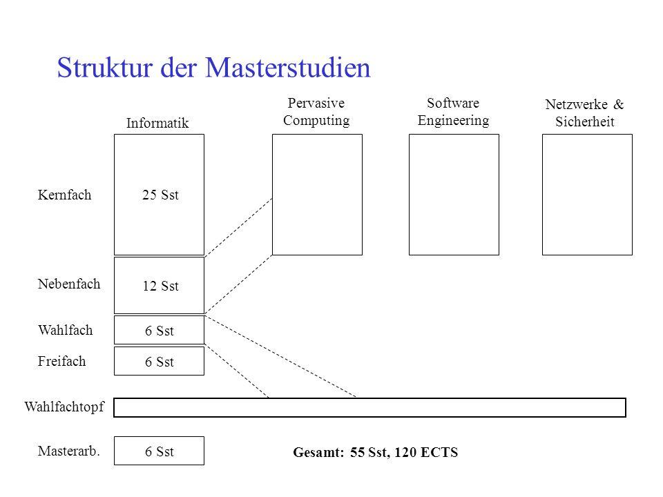 Struktur der Masterstudien