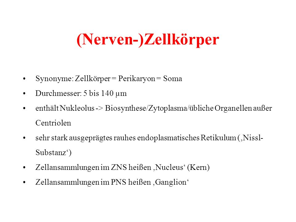 (Nerven-)Zellkörper • Synonyme: Zellkörper = Perikaryon = Soma