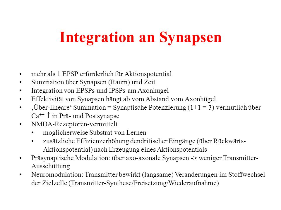 Integration an Synapsen