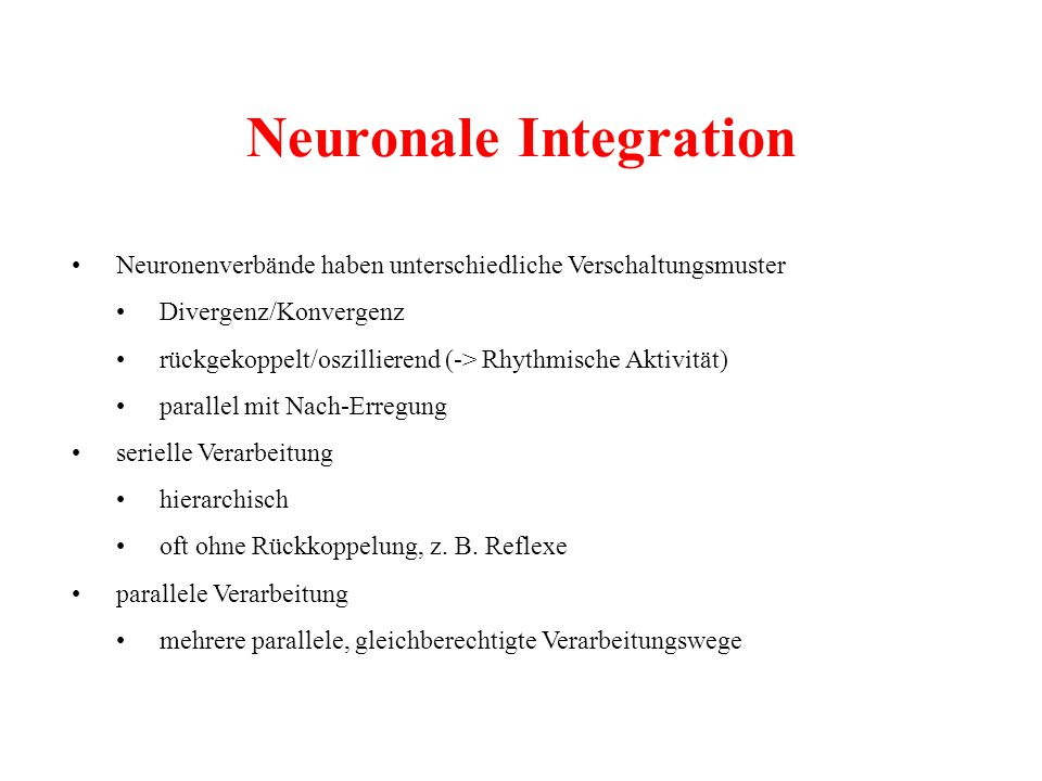 Neuronale Integration