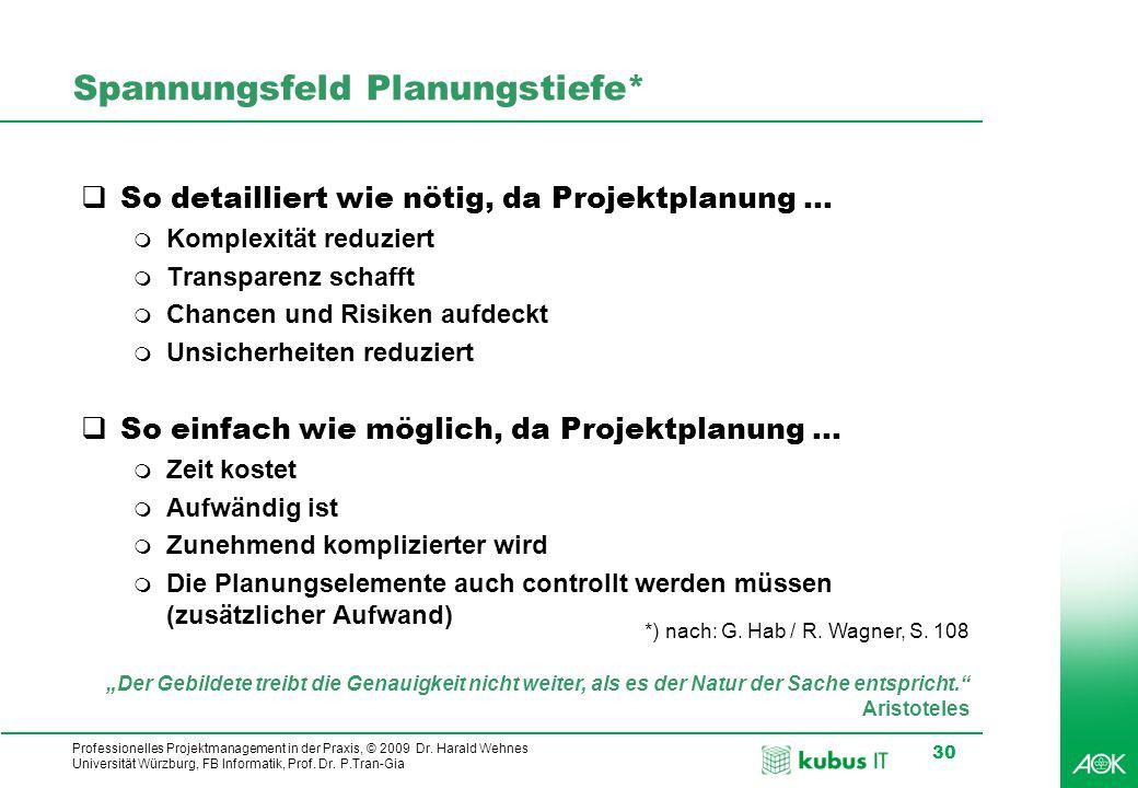 Spannungsfeld Planungstiefe*