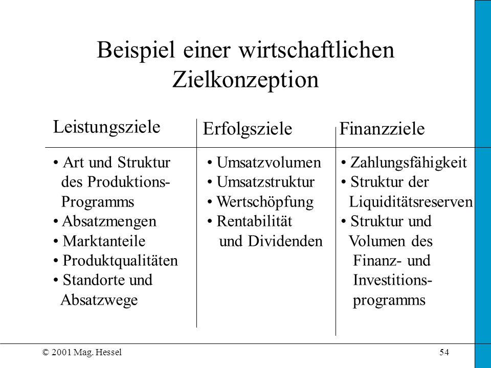 Beispiel einer wirtschaftlichen Zielkonzeption
