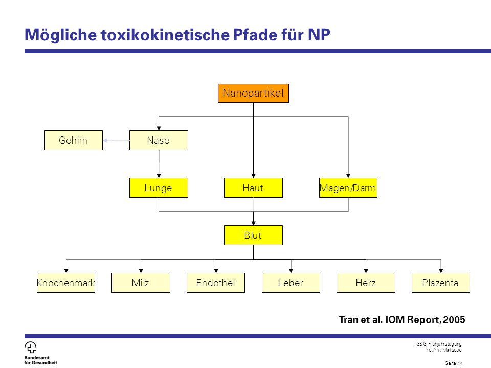 Mögliche toxikokinetische Pfade für NP