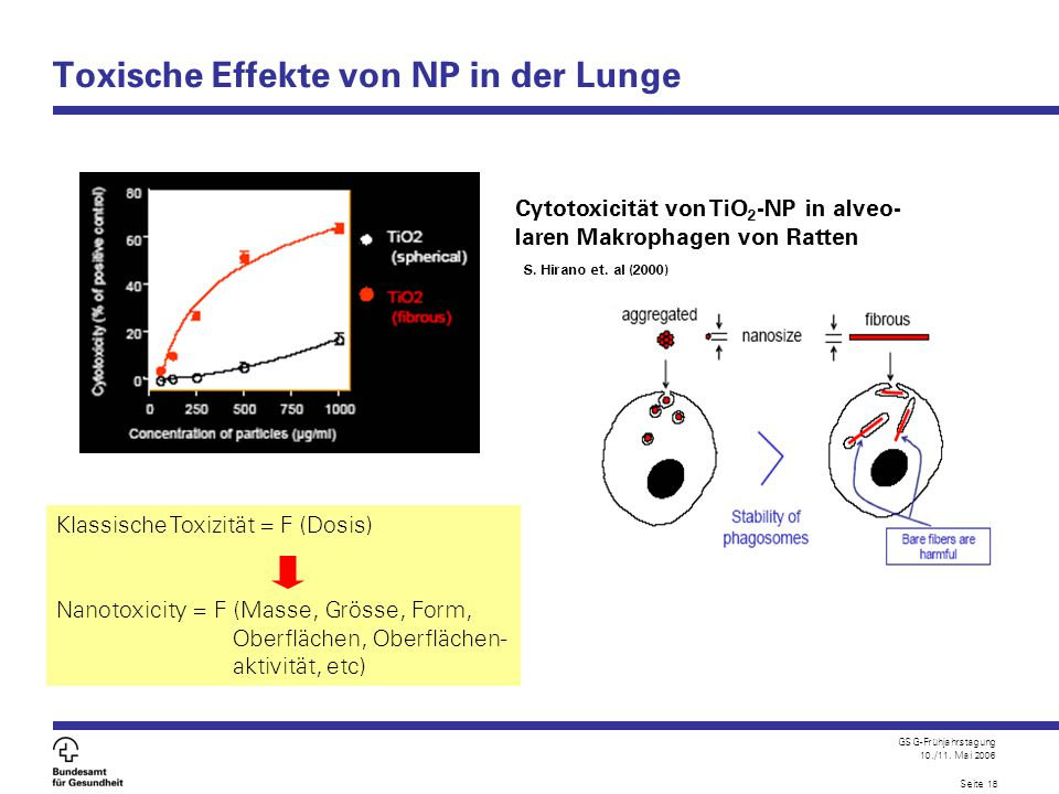 Toxische Effekte von NP in der Lunge