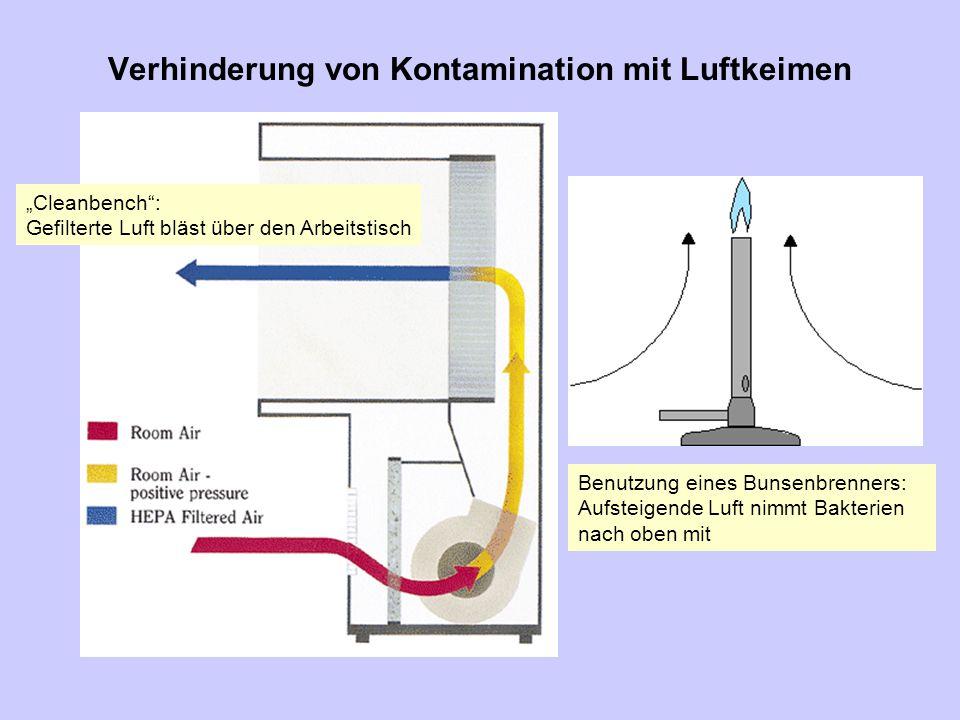 Verhinderung von Kontamination mit Luftkeimen