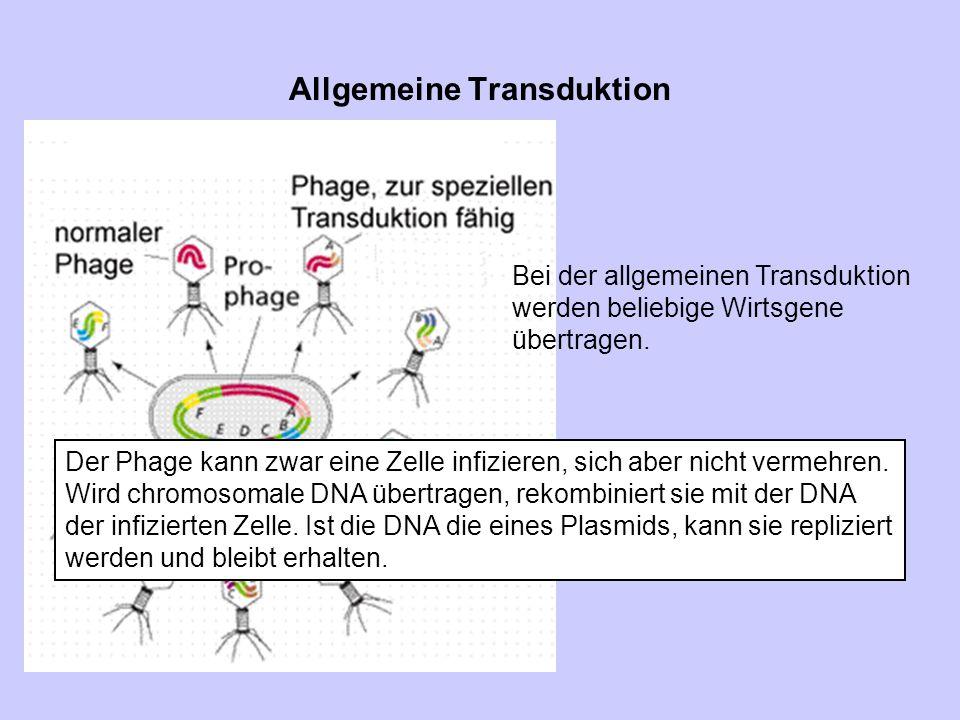 Allgemeine Transduktion
