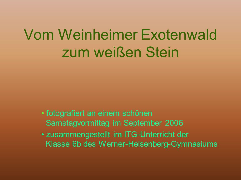 Vom Weinheimer Exotenwald zum weißen Stein