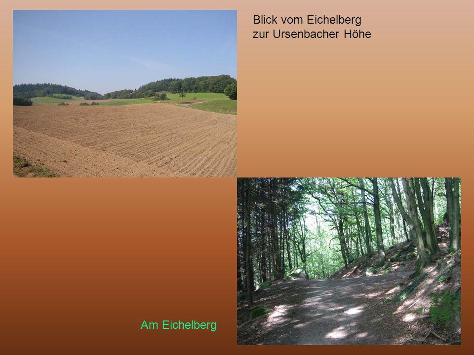 Blick vom Eichelberg zur Ursenbacher Höhe