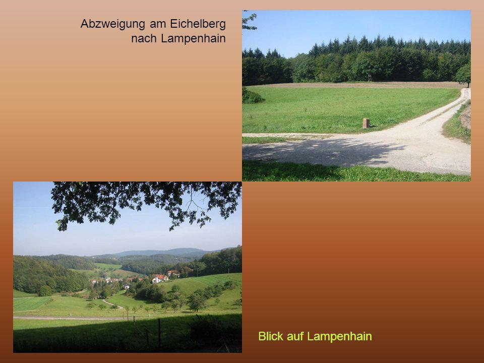 Abzweigung am Eichelberg nach Lampenhain