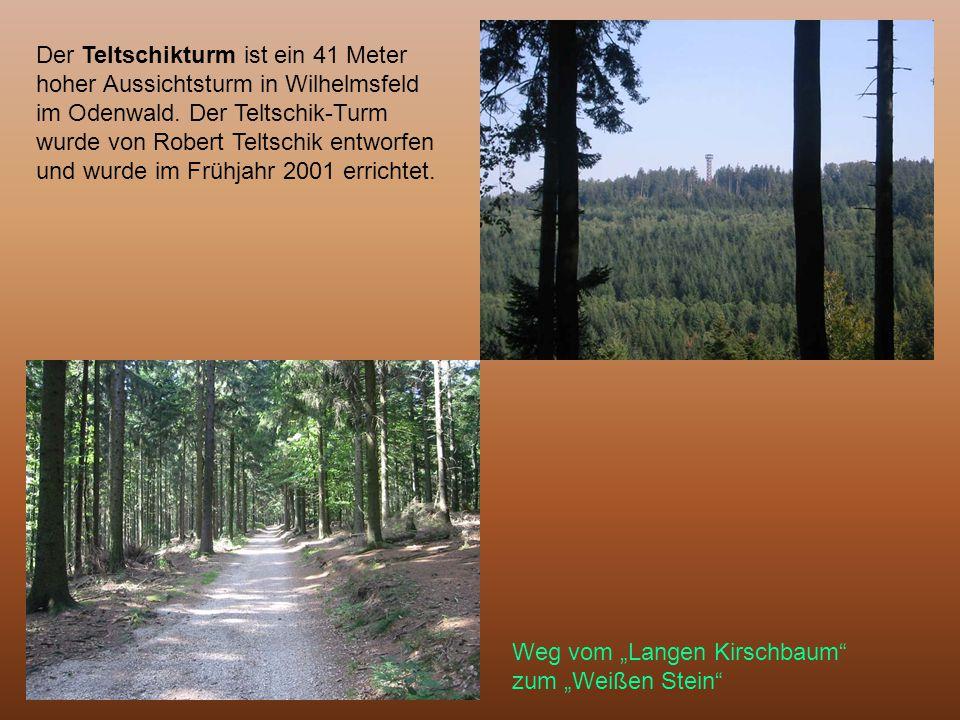 Der Teltschikturm ist ein 41 Meter hoher Aussichtsturm in Wilhelmsfeld im Odenwald. Der Teltschik-Turm wurde von Robert Teltschik entworfen und wurde im Frühjahr 2001 errichtet.